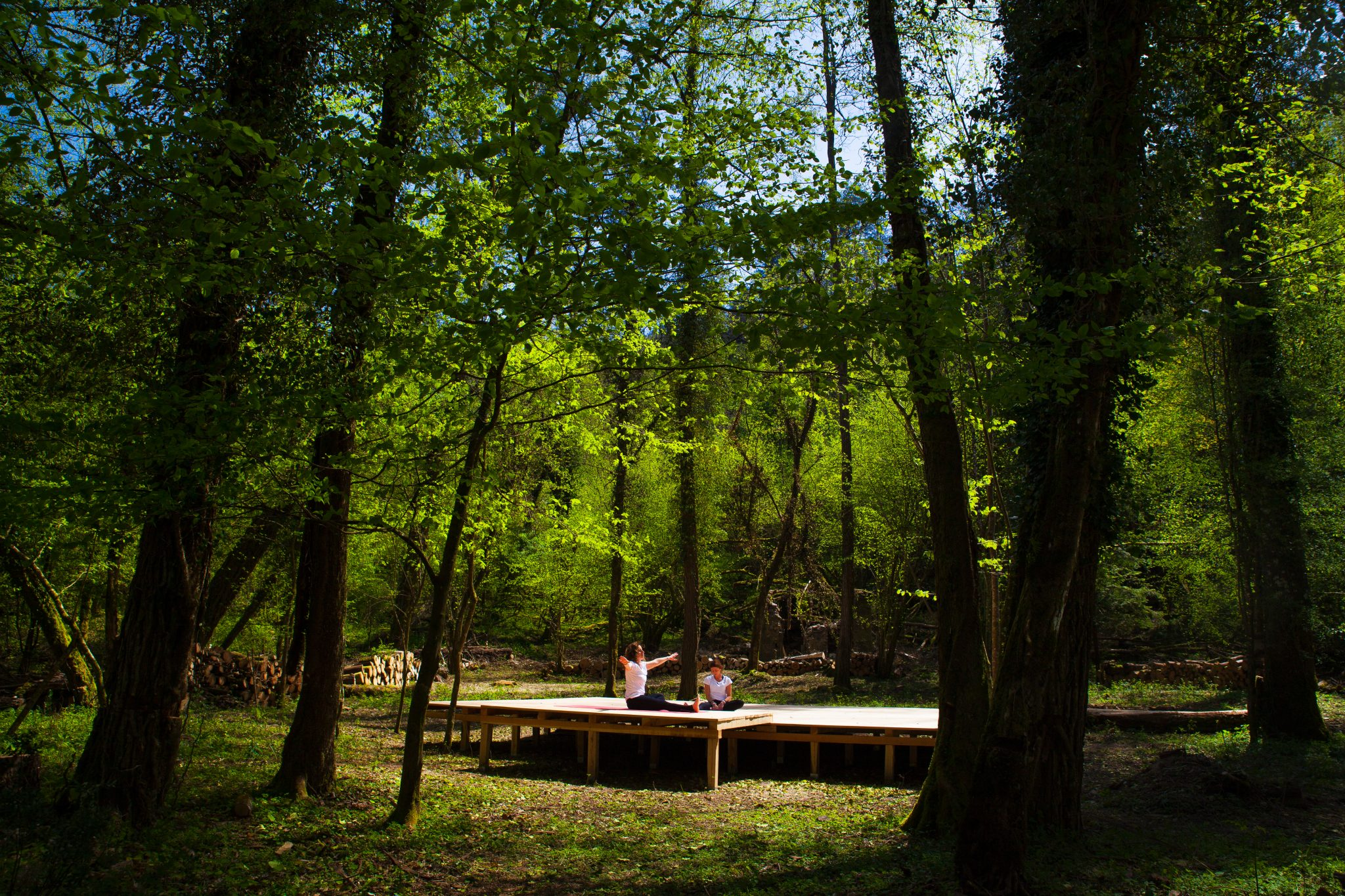 Yoga In The Forest Monte Pisano In Toscana
